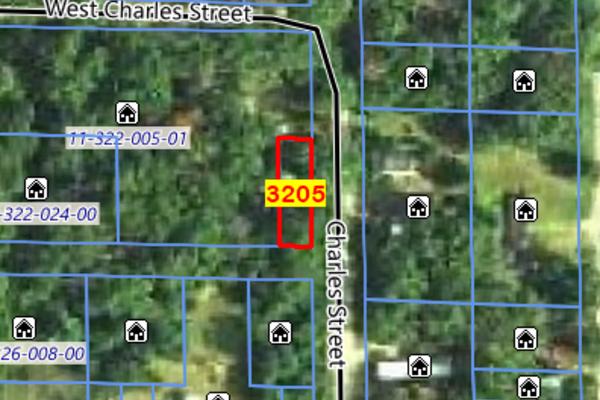 Lot 3205