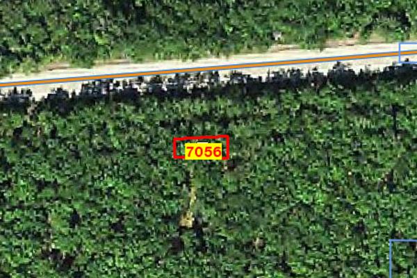 Lot 7056